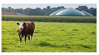 biogaz.JPG
